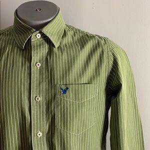 Green Striped Dress Shirt from American Eagle